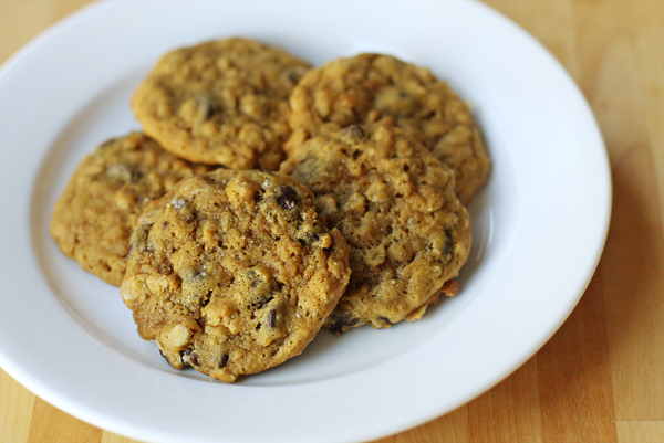 Chewy Salted Pumpkin Chocolate Chip Oatmeal Cookies   Sweet Anna's