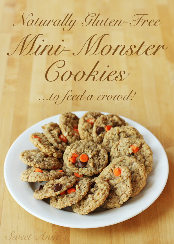 naturally gluten-free mini monster cookies | Sweet Anna's