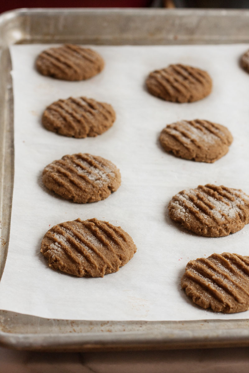 Gluten Free Chewy Molasses Cookies | Sweet Anna's